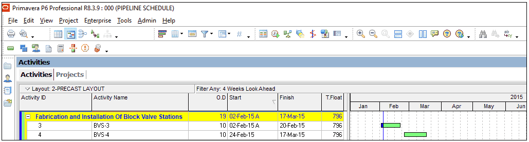 Creating Four Week Look Ahead Schedule in P6 Figure 6