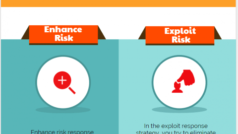 Enhance Risk Response vs Exploit Risk Response Strategies