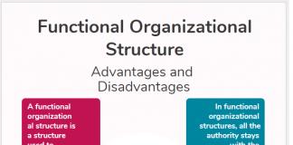 Functional Organizational Structure Advantages Disadvantages infographic