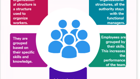 Functional Organizational Structure Advantages Disadvantages infographic