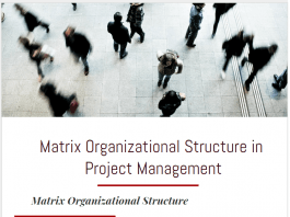 Advantages Disadvantages Matrix Organizational Structure