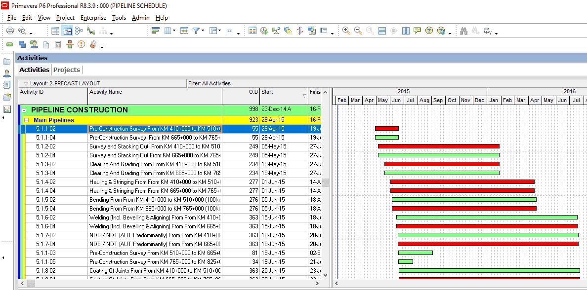 Primavera P6 Activity Codes Figure 1