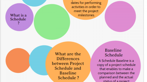 Project Schedule and Baseline Schedule Project Schedule vs Baseline Schedule infographic