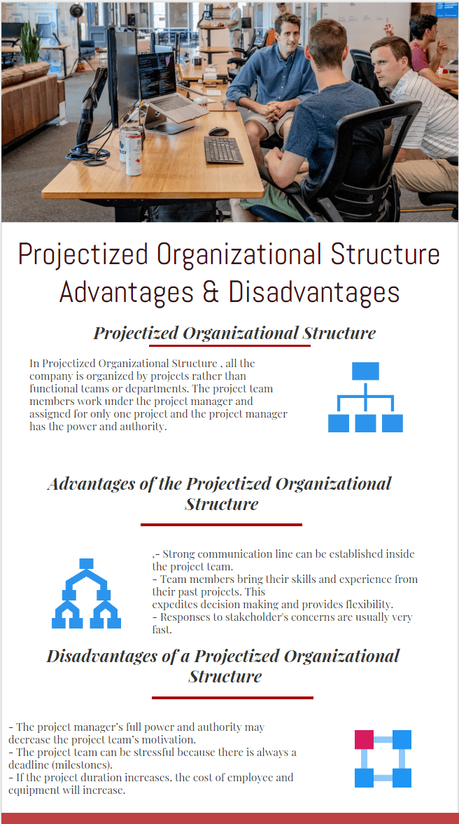 Projectized Organization Structure advantages and disadvantages infographic