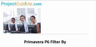 Primavera P6 Filters