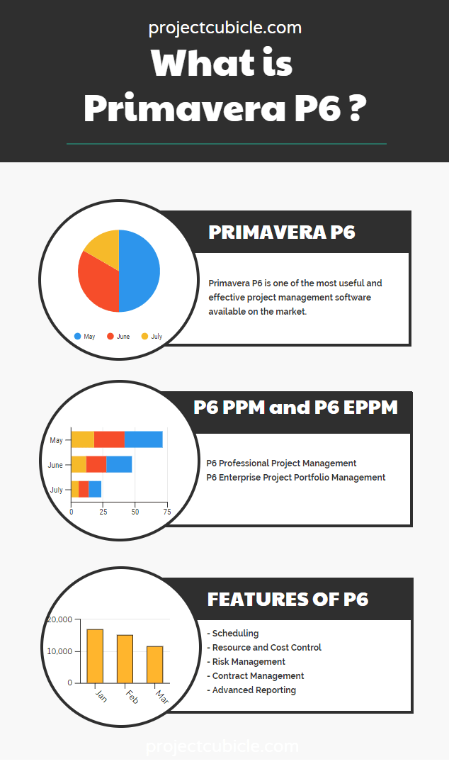 What is Primavera P6 project scheduling software infographic