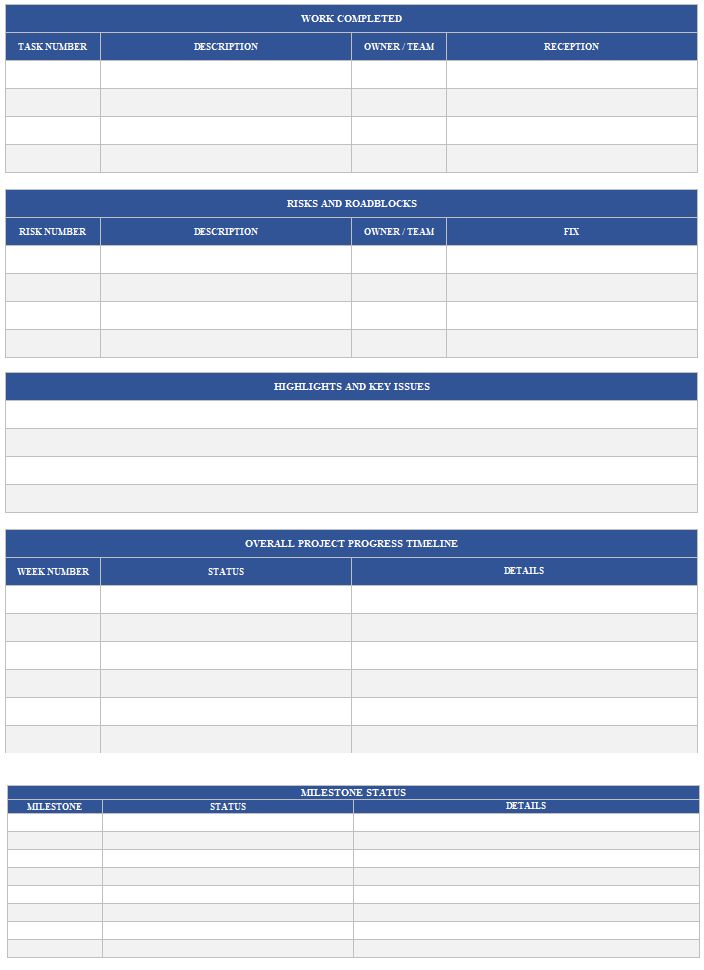 Weekly Project Status Report Template Page 2
