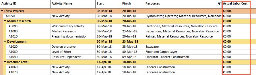 Primavera P6 XER schedule