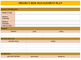 project risk management plan template and example