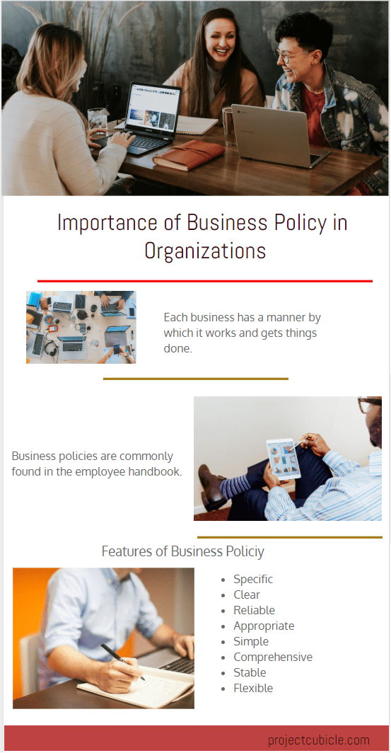 Importance of Business Policy