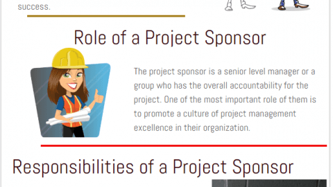project sponsor roles responsibilities definition PMP