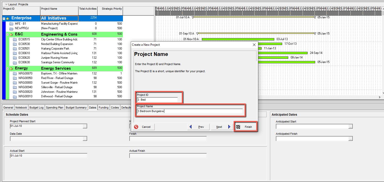 Primavera P6 Enter Project Name