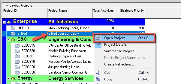 Primavra P6 Open Project